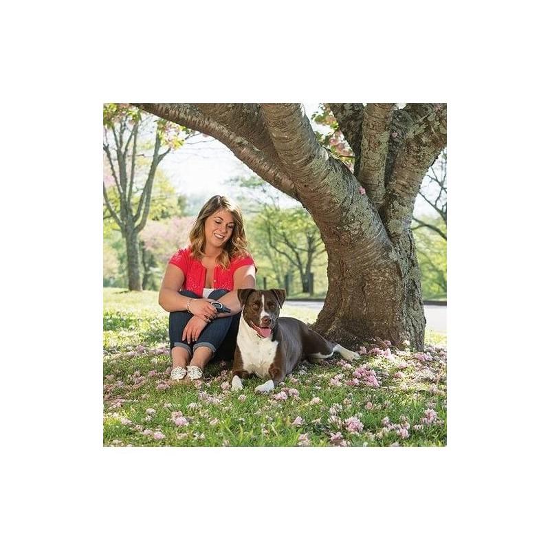 Erziehungshalsband PetSafe Standard 900m