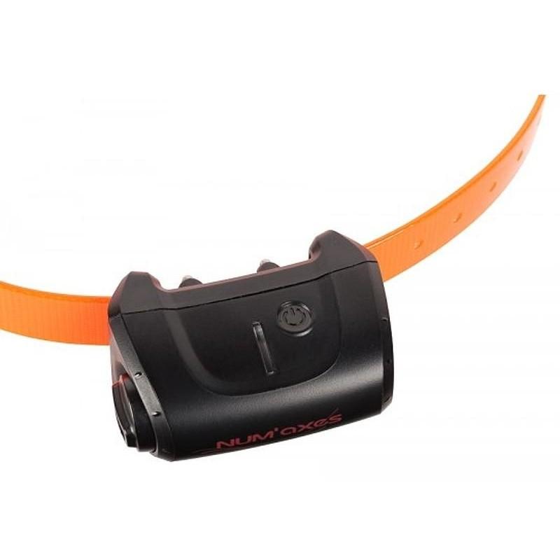 Elektrohalsband CANICOM 5.500